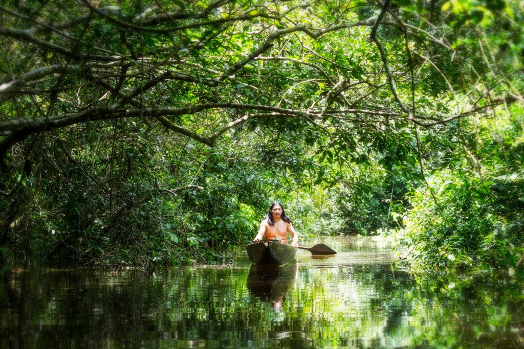 Indien Amazonie Brésil forêt
